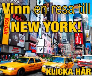 newyork333resa